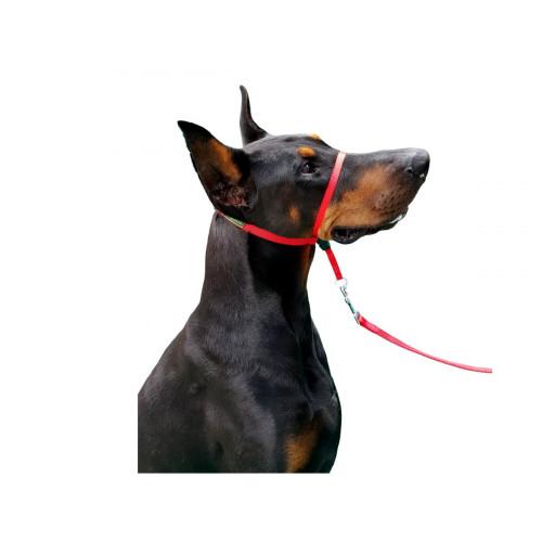 Coleira Cabresto K9 Spirit Para Cães