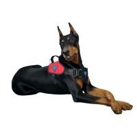 Peitoral Tático Extreme K9 Spirit Para Cães